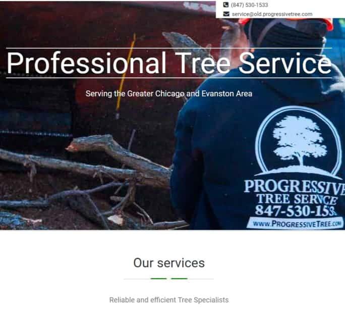 old progressive tree website